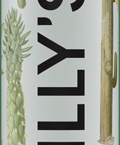 botella chillys cactus