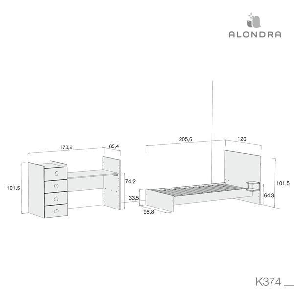 K374-TECH-DISM