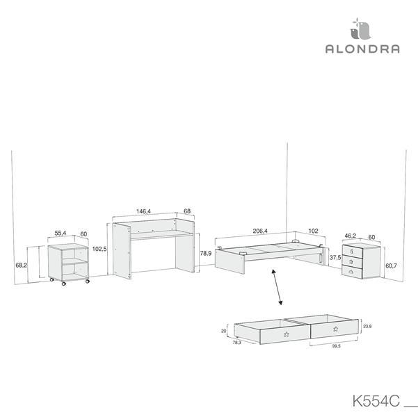 K554C-TECH-DISM
